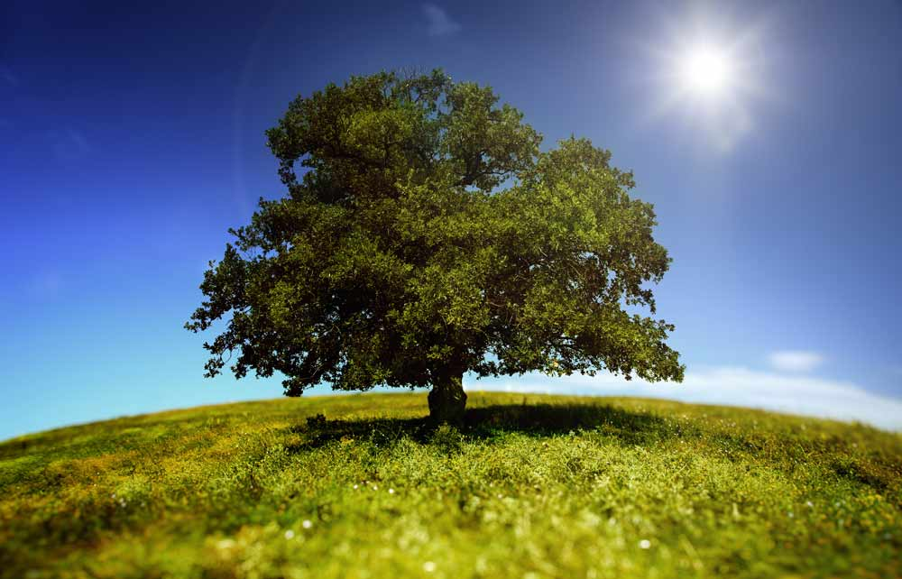 Climatizer Plus isolering har miljømessige fordelse såsom lavt energiforbrug, ingen fururenende stoffer, brand sikker og sundere for installatører
